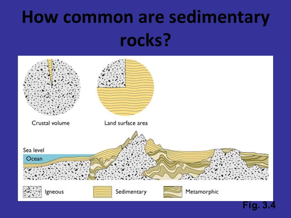 How common are sedimentary rocks