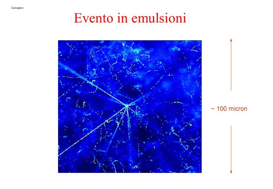 Immagine Evento in emulsioni ~ 100 micron