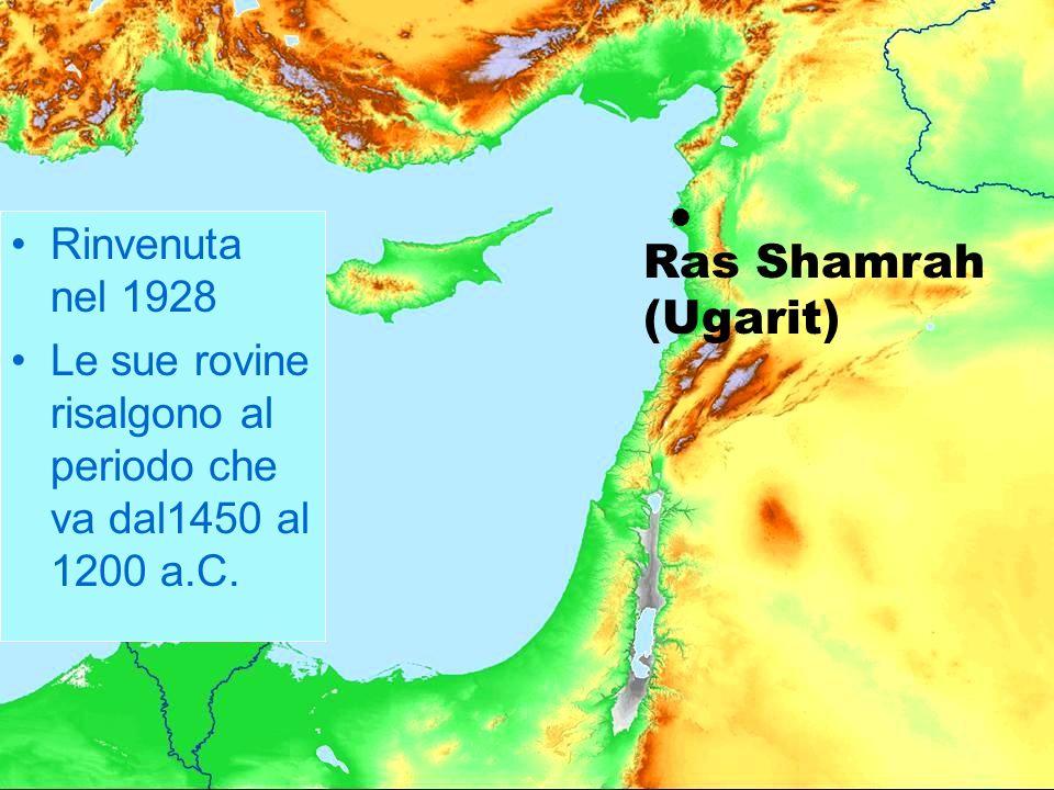 Ras Shamrah (Ugarit) Rinvenuta nel 1928