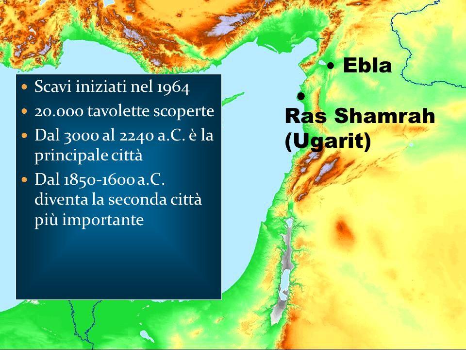 Ebla Ras Shamrah (Ugarit) Scavi iniziati nel 1964