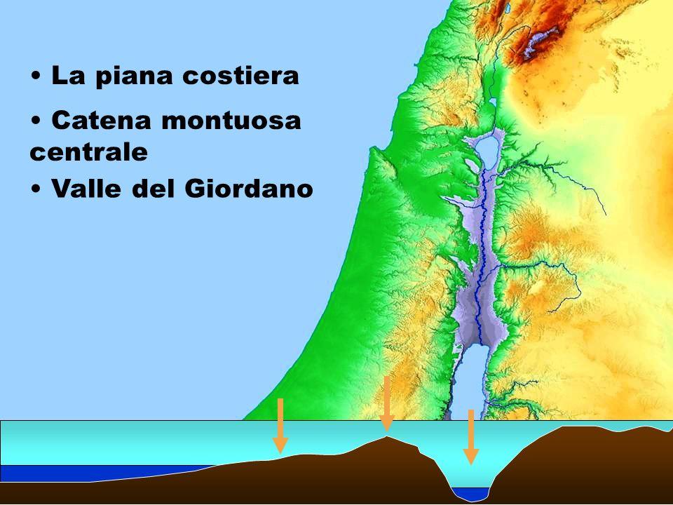 La piana costiera Catena montuosa centrale Valle del Giordano