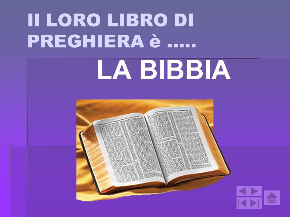 Il LORO LIBRO DI PREGHIERA è …..