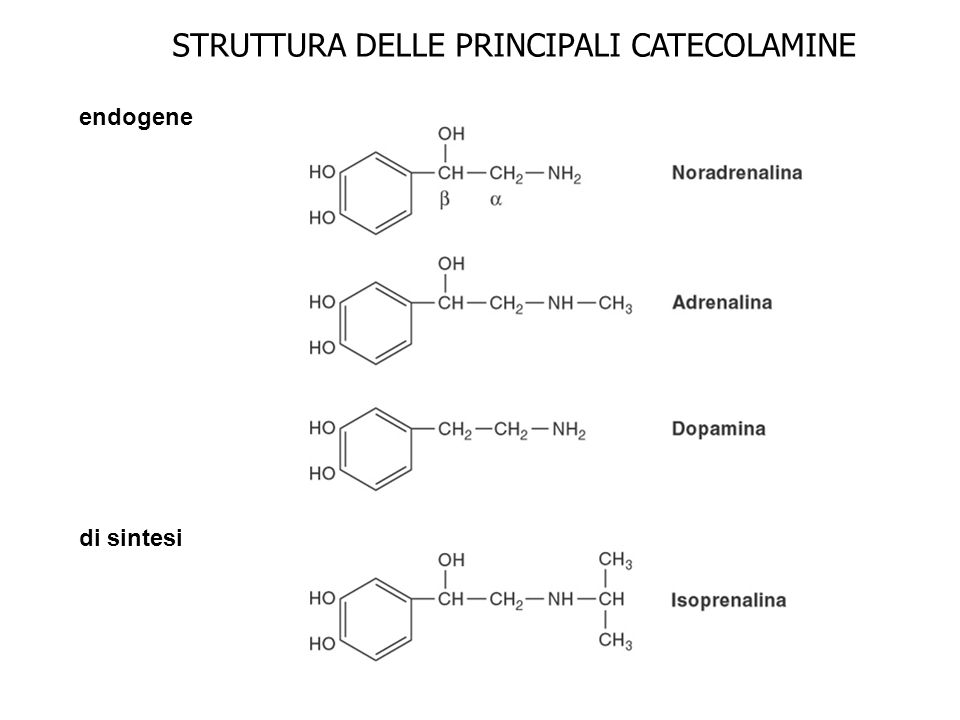 STRUTTURA DELLE PRINCIPALI CATECOLAMINE