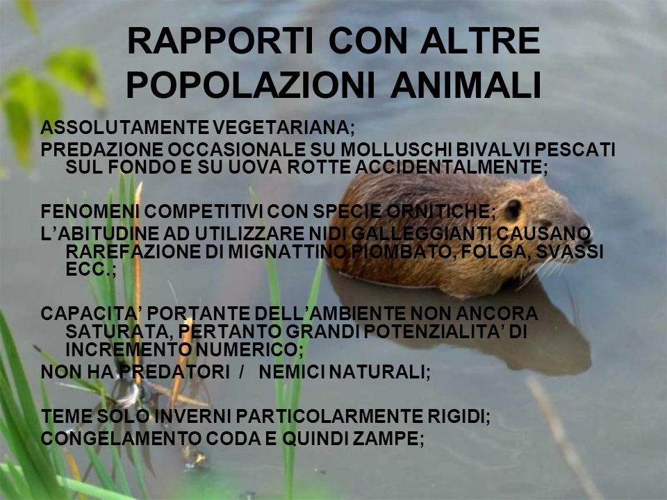 RAPPORTI CON ALTRE POPOLAZIONI ANIMALI
