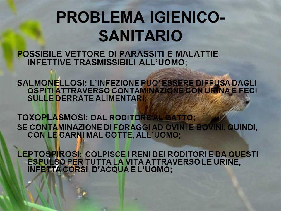 PROBLEMA IGIENICO-SANITARIO