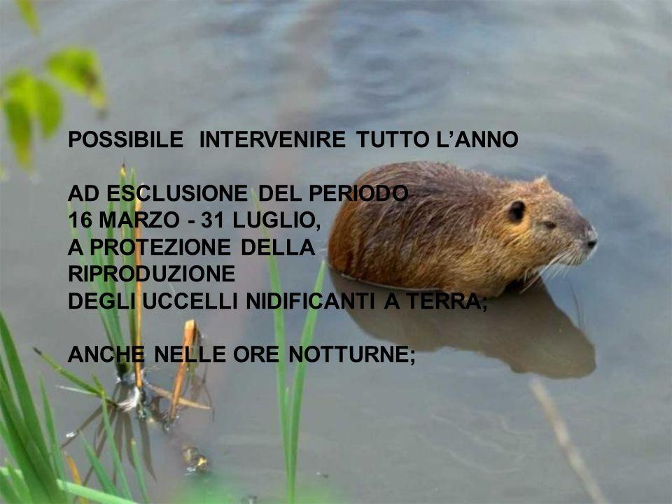 POSSIBILE INTERVENIRE TUTTO L'ANNO