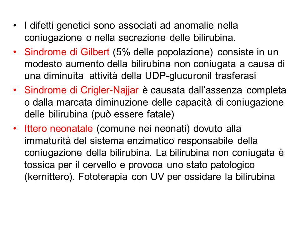 I difetti genetici sono associati ad anomalie nella coniugazione o nella secrezione delle bilirubina.