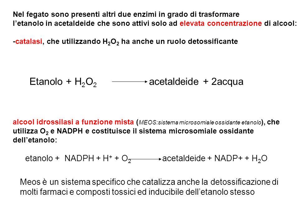 Etanolo + H2O2 acetaldeide + 2acqua