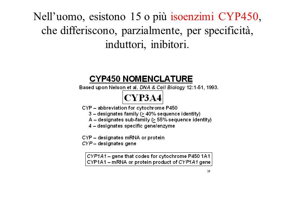 Nell'uomo, esistono 15 o più isoenzimi CYP450, che differiscono, parzialmente, per specificità, induttori, inibitori.