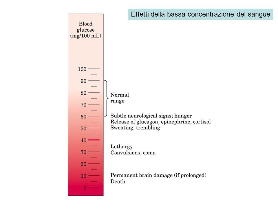 Effetti della bassa concentrazione del sangue