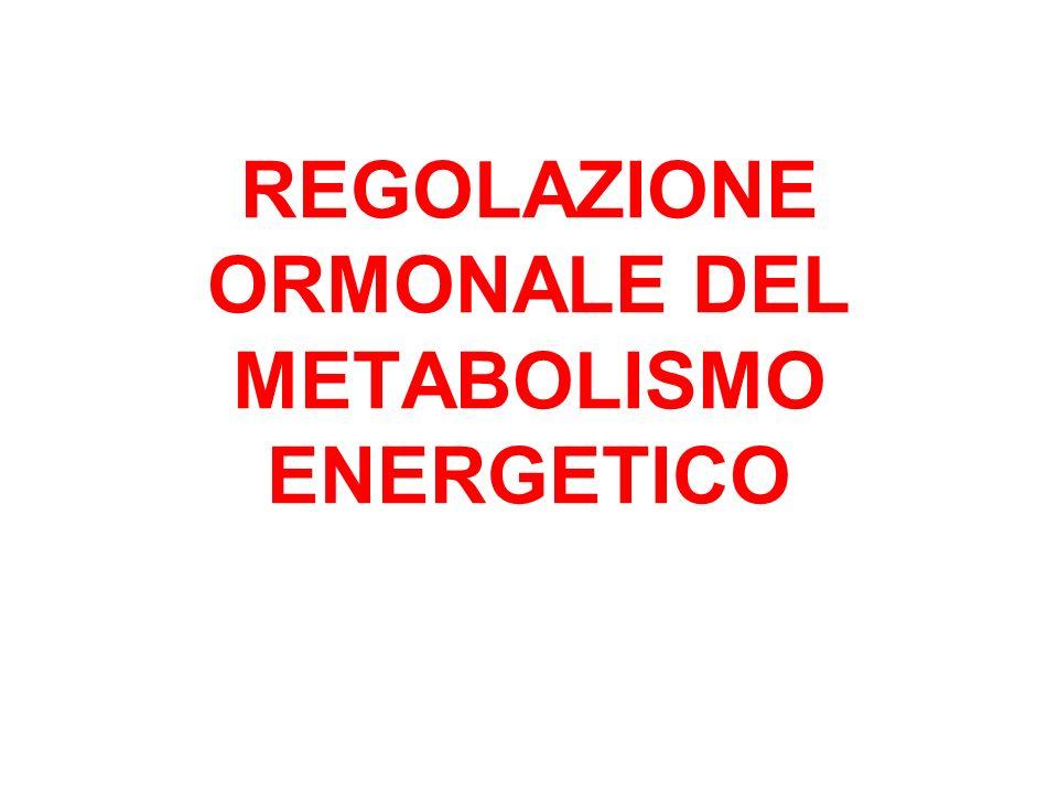 REGOLAZIONE ORMONALE DEL METABOLISMO ENERGETICO