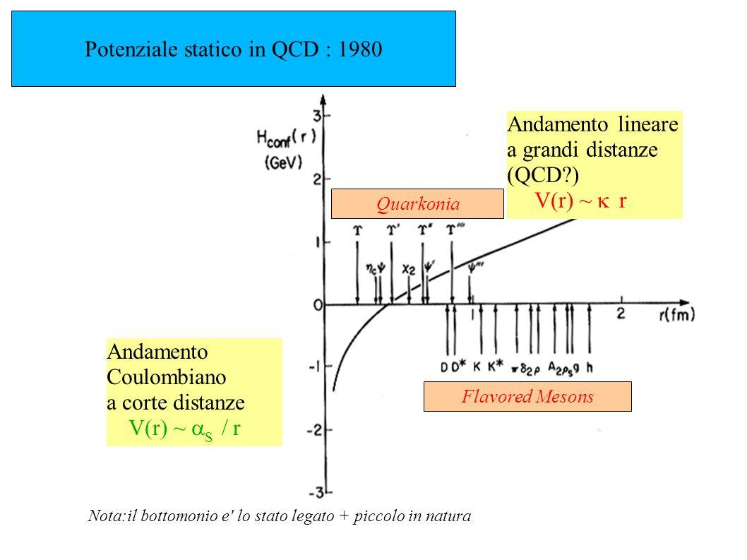 Potenziale statico in QCD : 1980