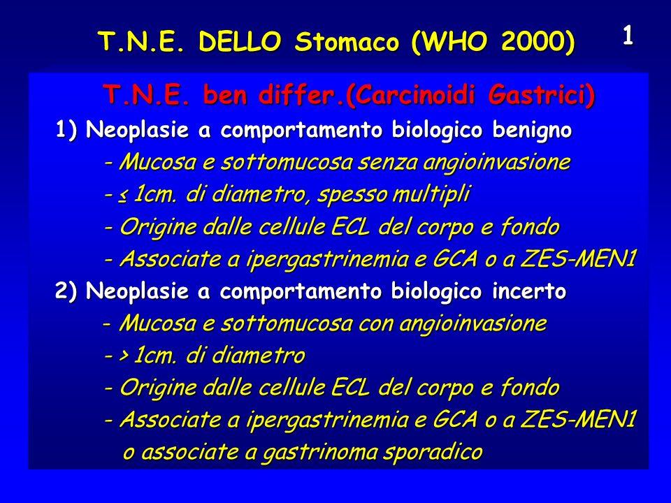 T.N.E. DELLO Stomaco (WHO 2000)