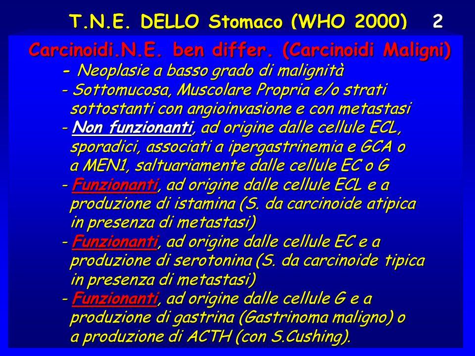 T.N.E. DELLO Stomaco (WHO 2000) 2