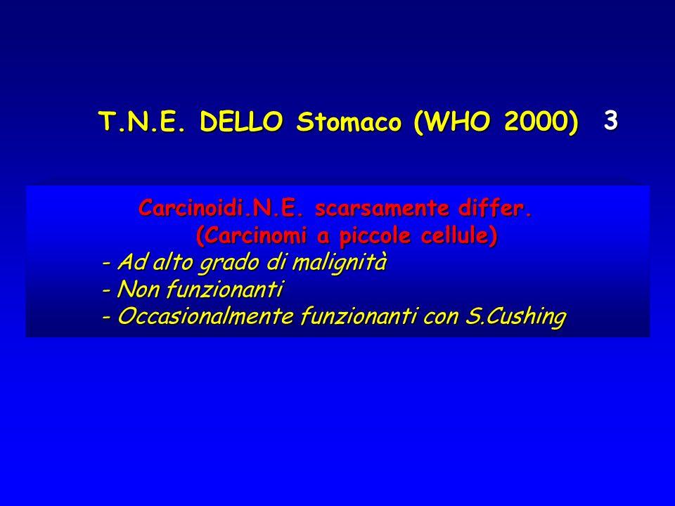 T.N.E. DELLO Stomaco (WHO 2000) 3