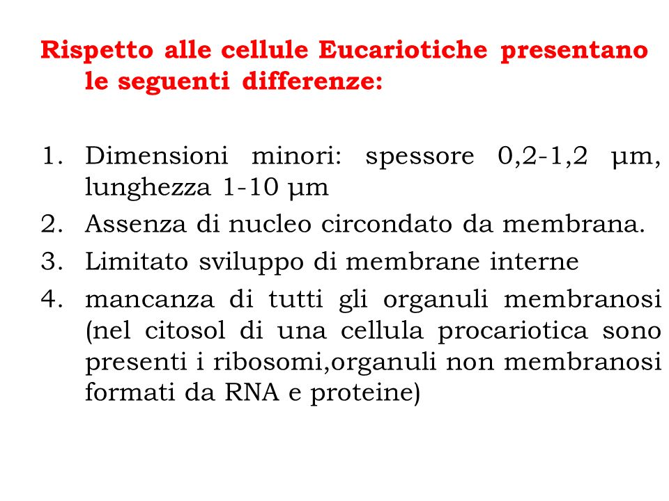 Rispetto alle cellule Eucariotiche presentano le seguenti differenze: