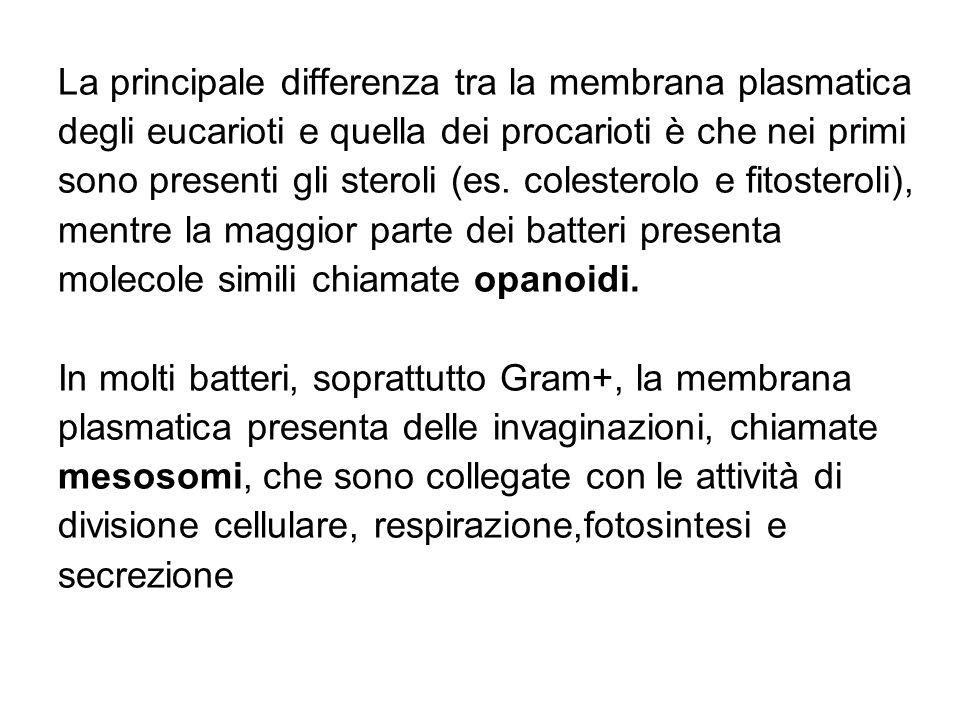 La principale differenza tra la membrana plasmatica