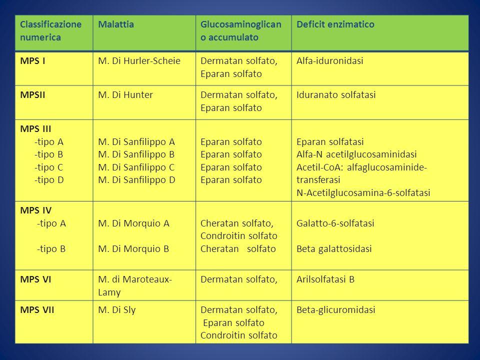 Classificazione numerica