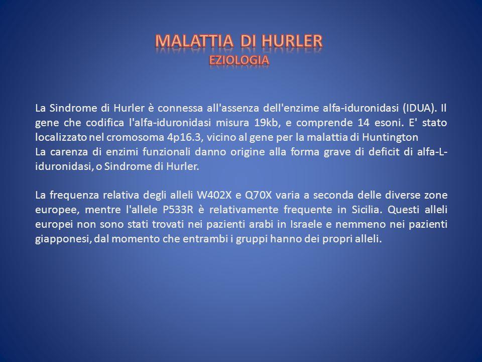 MALATTIA DI HURLER EZIOLOGIA