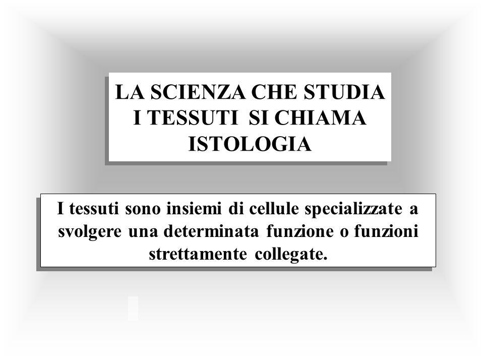 LA SCIENZA CHE STUDIA I TESSUTI SI CHIAMA ISTOLOGIA