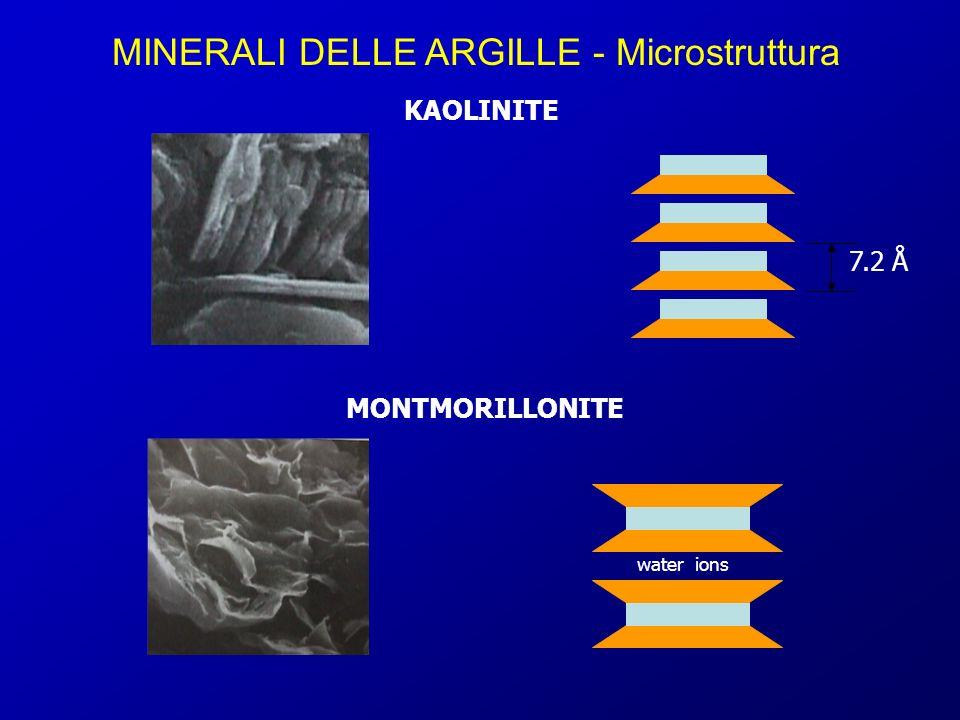 MINERALI DELLE ARGILLE - Microstruttura