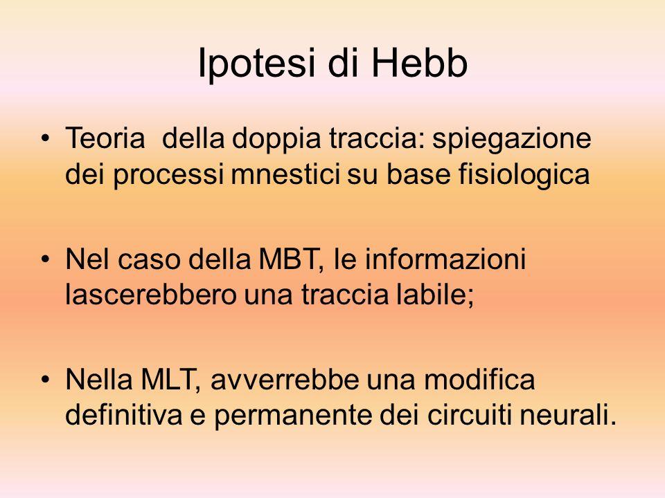 Ipotesi di Hebb Teoria della doppia traccia: spiegazione dei processi mnestici su base fisiologica.