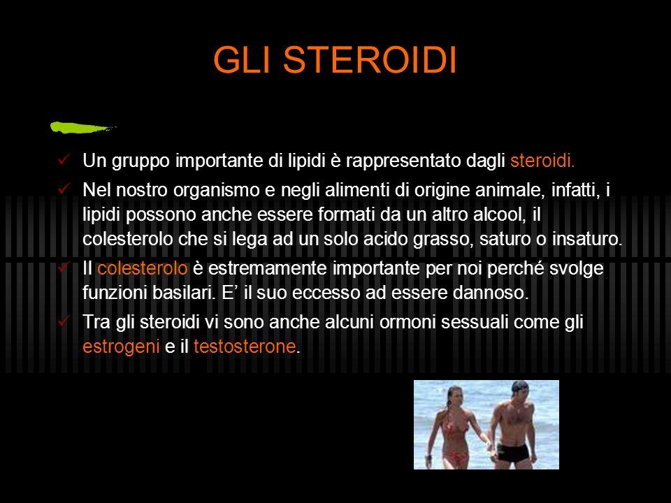 GLI STEROIDI Un gruppo importante di lipidi è rappresentato dagli steroidi.