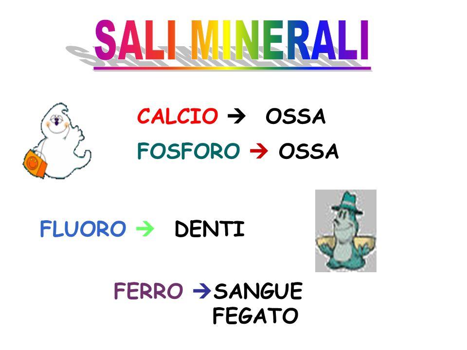 SALI MINERALI CALCIO  OSSA FOSFORO  OSSA FLUORO  DENTI