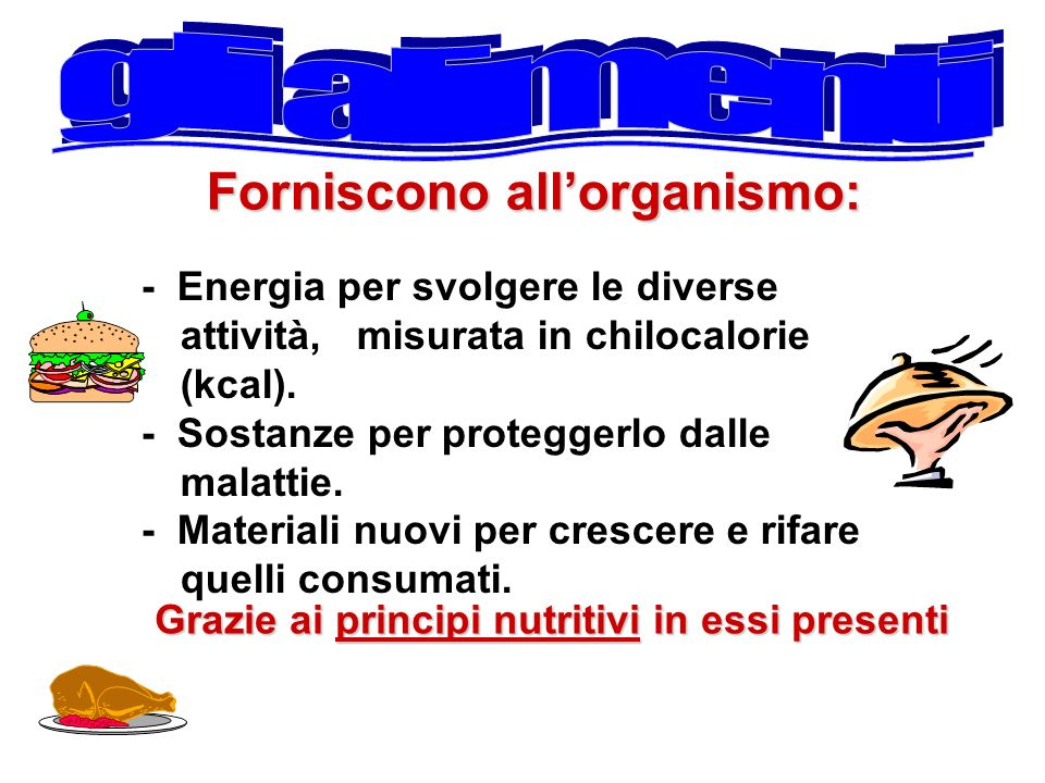 Forniscono all'organismo: