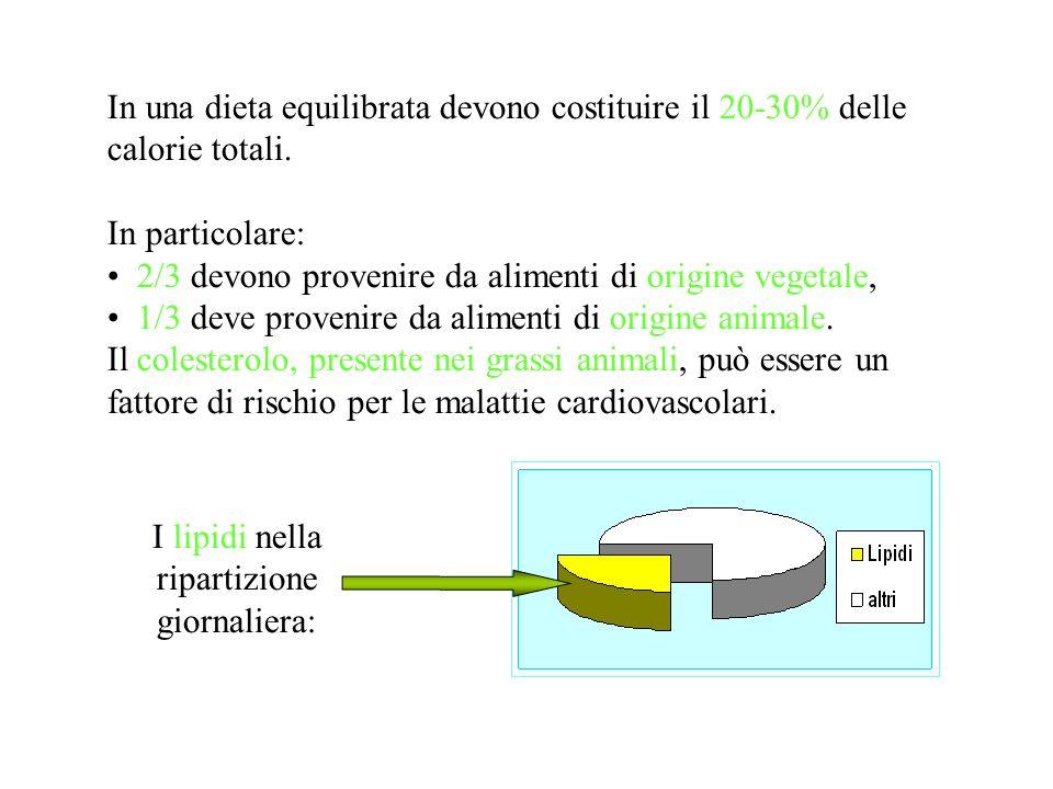In una dieta equilibrata devono costituire il 20-30% delle calorie totali.