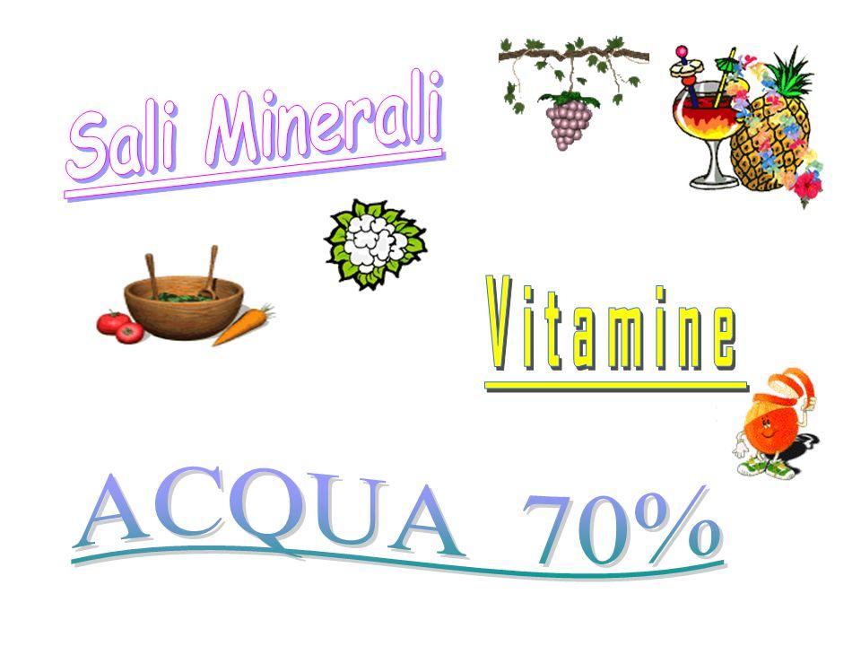 Sali Minerali Vitamine ACQUA 70%