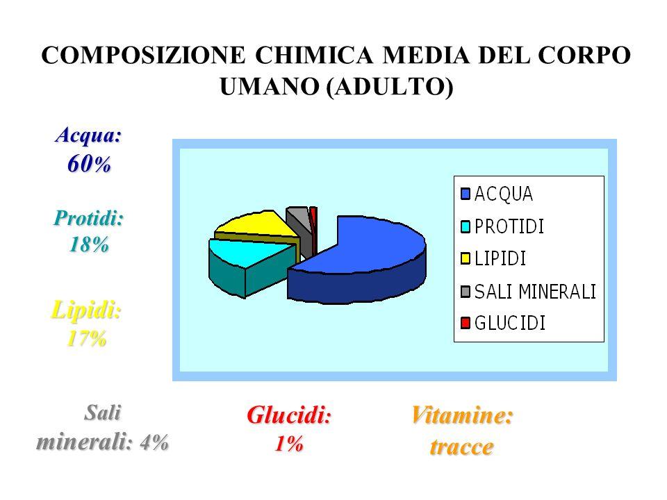 COMPOSIZIONE CHIMICA MEDIA DEL CORPO UMANO (ADULTO)