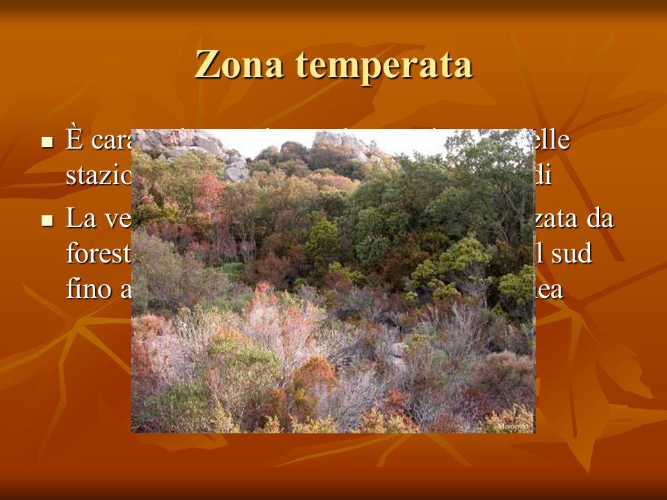 Zona temperata È caratterizzata da un alternarsi netto delle stazioni con periodi caldi e periodi freddi.