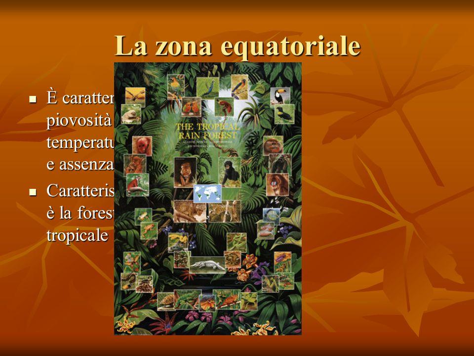 La zona equatoriale È caratterizzata da piovosità elevata, temperature sopra i 23° e assenza di stagioni.