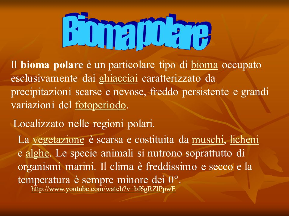 Bioma polare