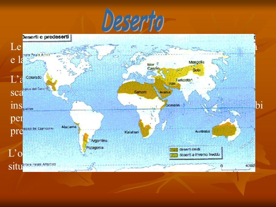 Deserto Le caratteristiche salienti del bioma sono l'estrema aridità e la quasi totale assenza di vegetazione.