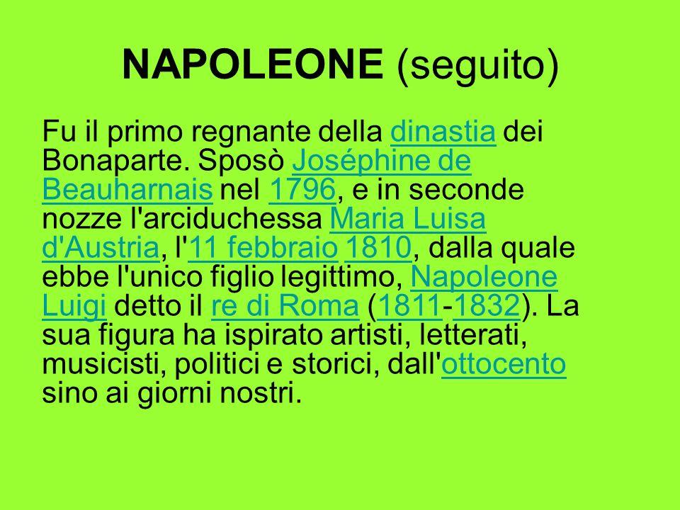 NAPOLEONE (seguito)