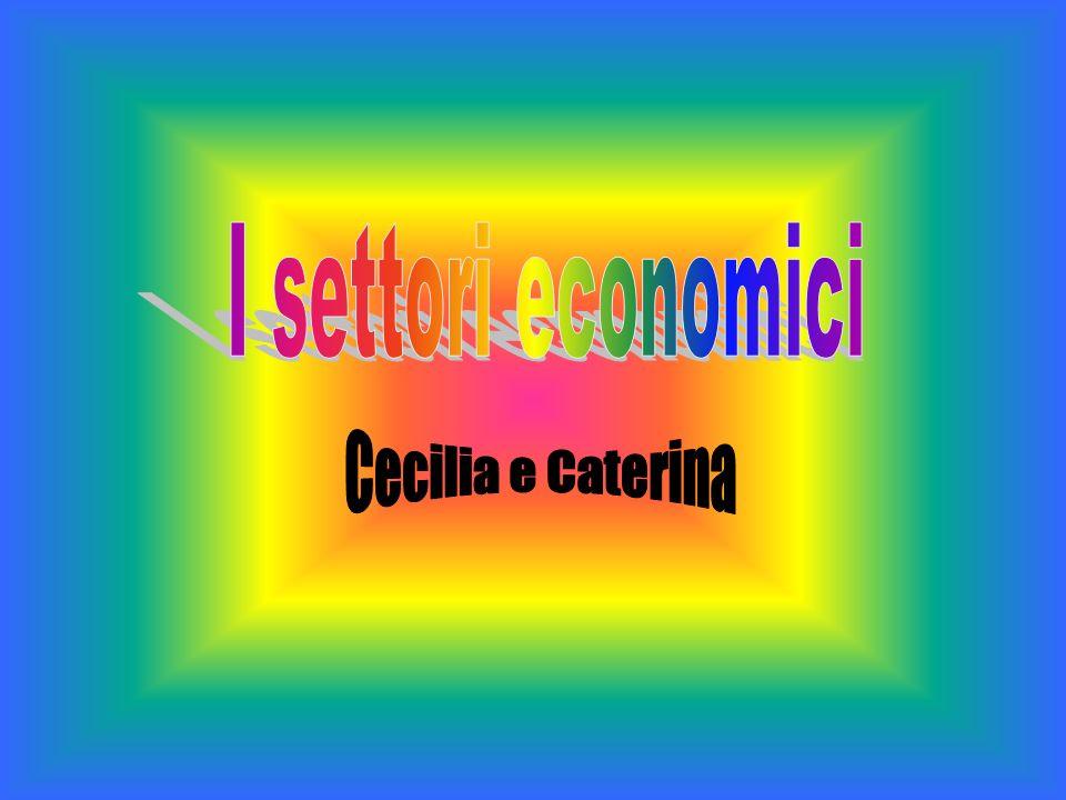 I settori economici Cecilia e Caterina