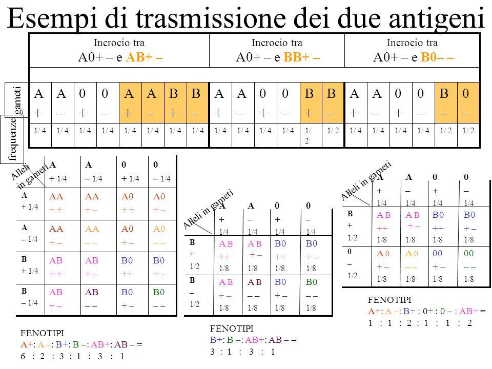 Esempi di trasmissione dei due antigeni