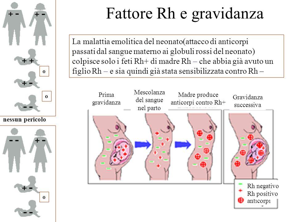 Fattore Rh e gravidanza