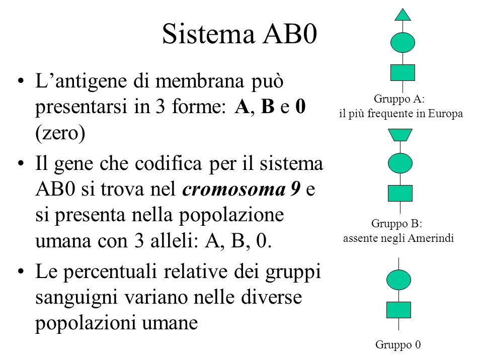 Gruppo A:il più frequente in Europa. Sistema AB0. L'antigene di membrana può presentarsi in 3 forme: A, B e 0 (zero)