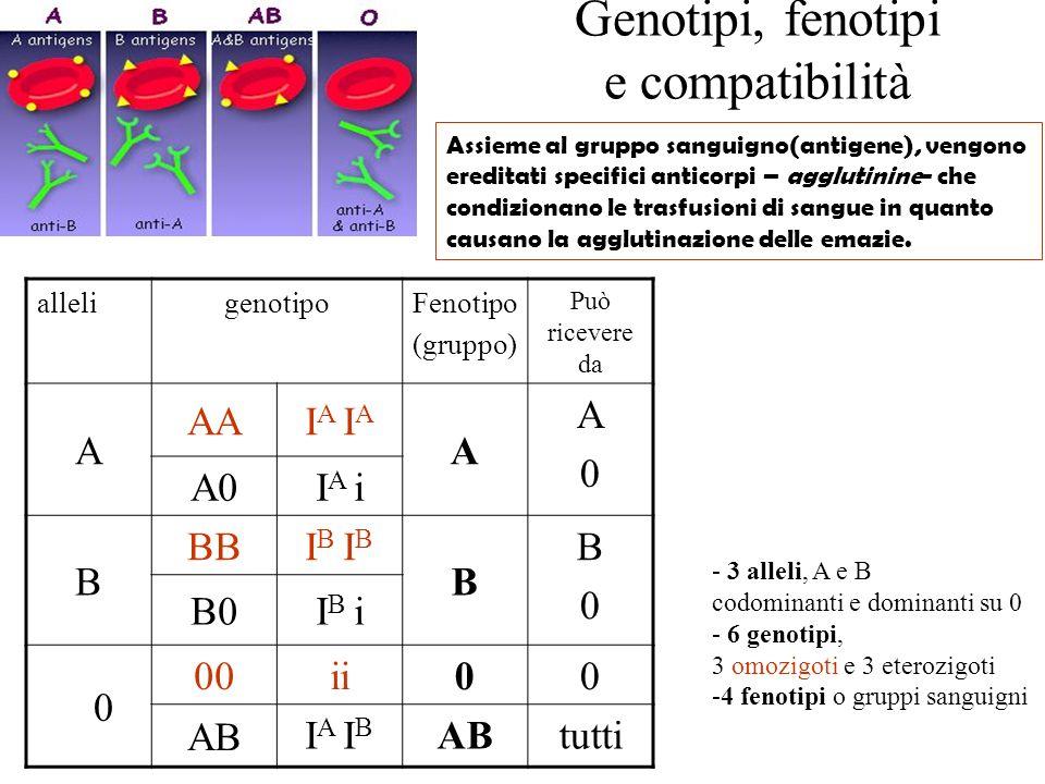 Genotipi, fenotipi e compatibilità