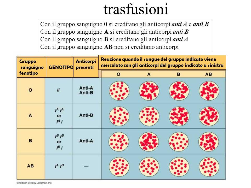 trasfusioniCon il gruppo sanguigno 0 si ereditano gli anticorpi anti A e anti B. Con il gruppo sanguigno A si ereditano gli anticorpi anti B.