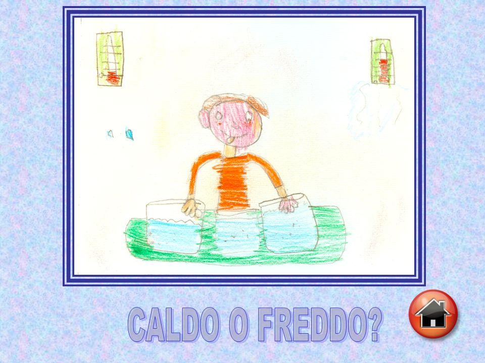 CALDO O FREDDO