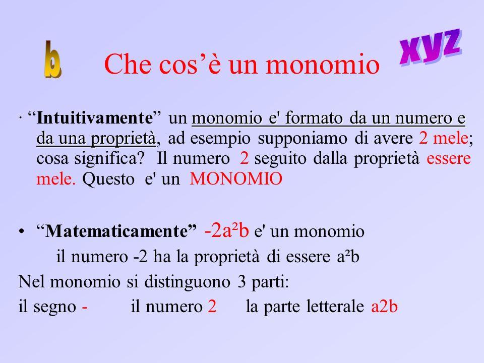 Che cos'è un monomio xyz b
