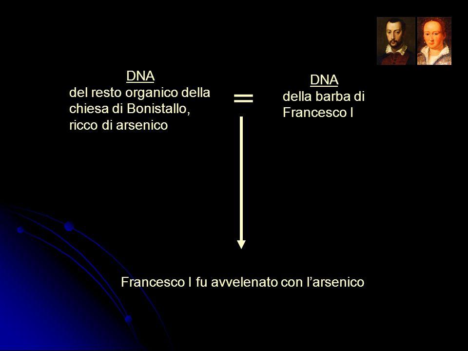 = DNA DNA del resto organico della chiesa di Bonistallo,