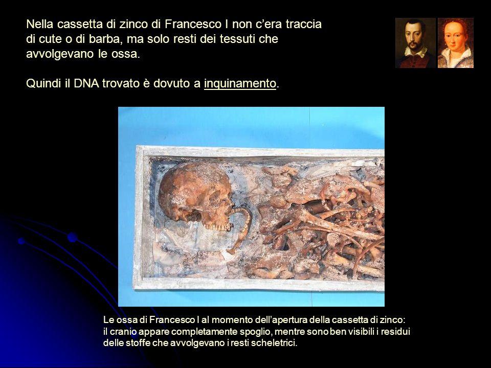 Quindi il DNA trovato è dovuto a inquinamento.