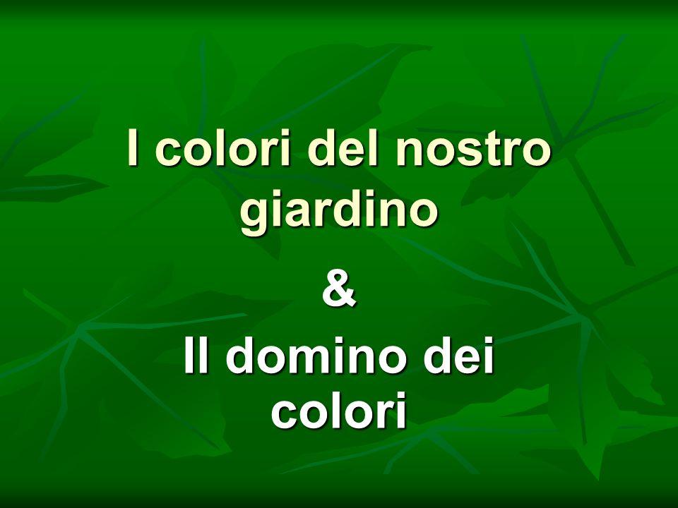 I colori del nostro giardino