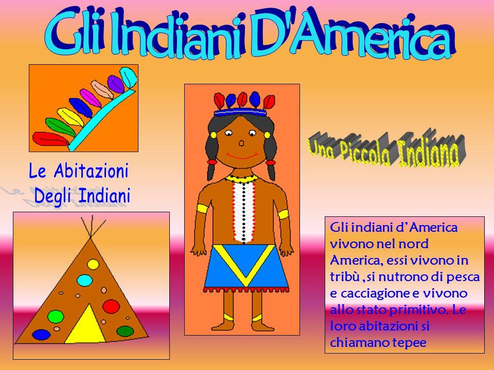 Gli Indiani D America Una Piccola Indiana Le Abitazioni Degli Indiani