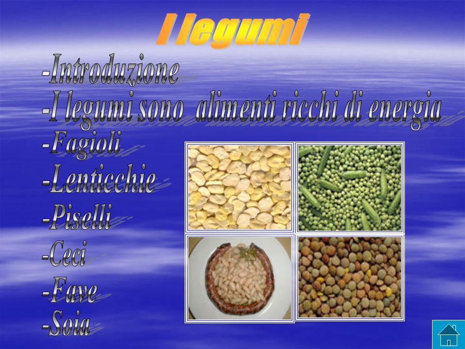 -I legumi sono alimenti ricchi di energia